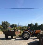 tractor_ponte
