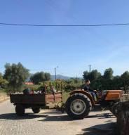 tractor_ponte